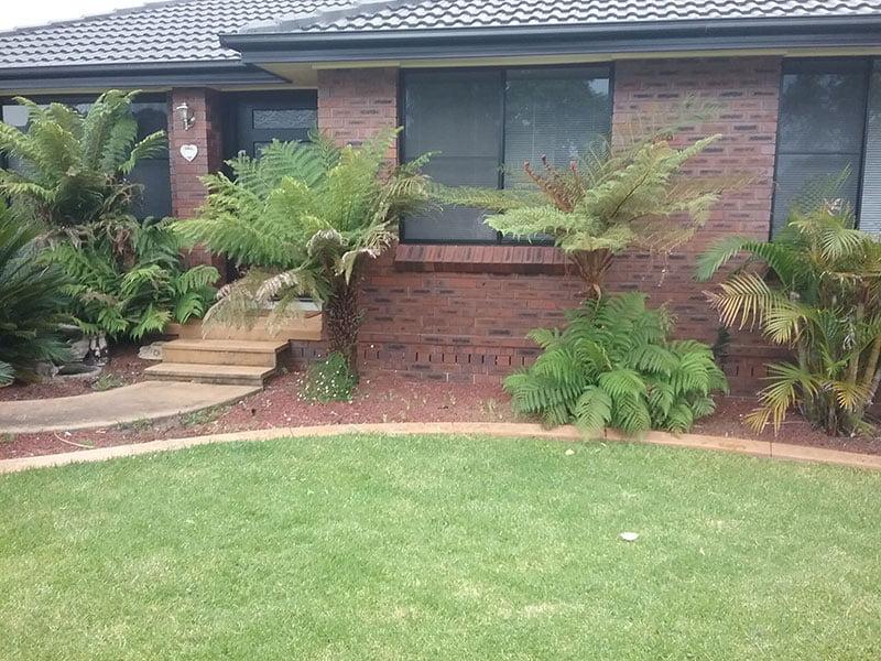 Before small garden reno 2