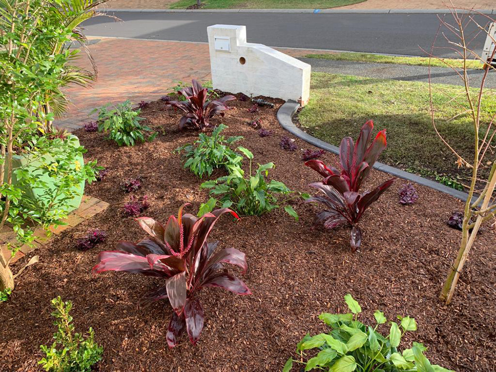 Garden Reno, Edging and Plants After Image