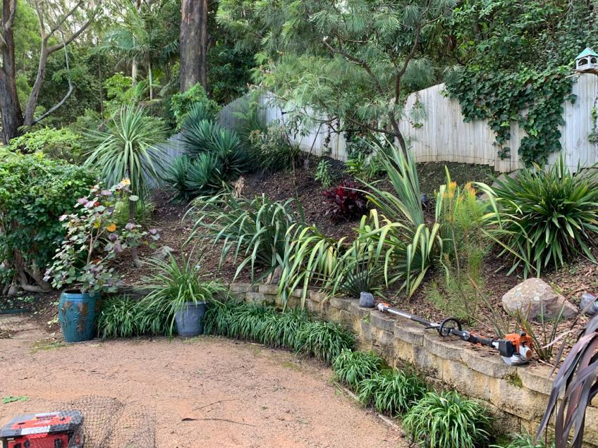 Landscaping Improvements Before Image