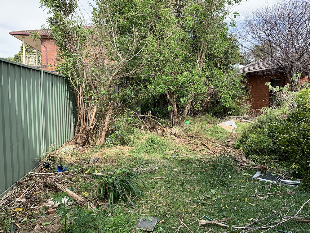 Garden Clean Up Before Image