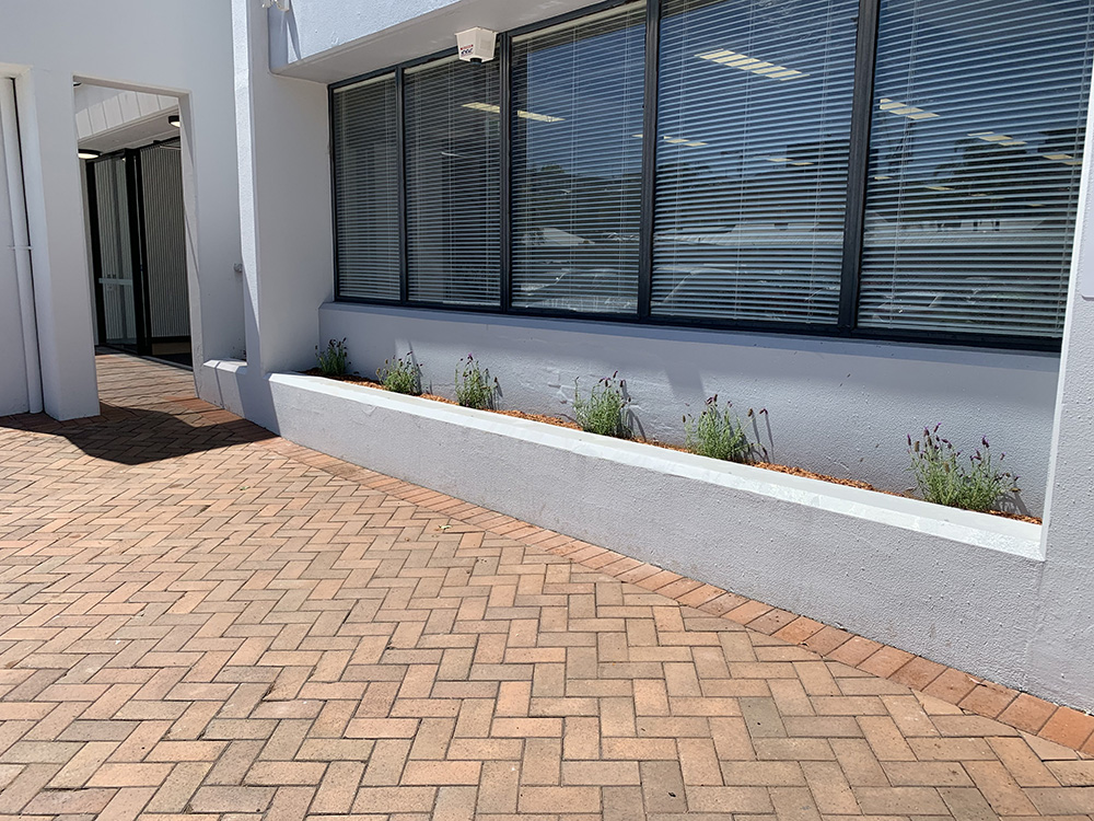 Garden Renovation, Planting and Mulching After